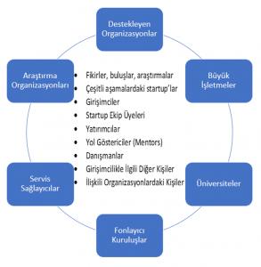 startup ekosistemi