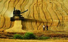 Tarımda çözüm kooperatifleşme