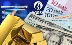 Haftanın kazanç şampiyonu:Borsa ve dolar