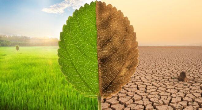Karbon ayak izimiz iklimi, bireysel ayak izimiz yaşamı değiştirir
